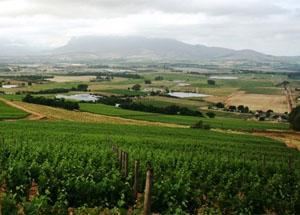 Fairview Farm, Paarl, Western Cape