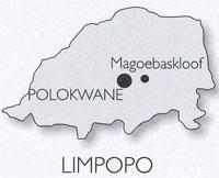 Magoebaskloof - Polokwane