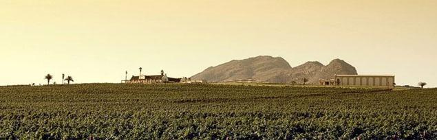 Org de Rac Wine Estate, Swartland, Western Cape