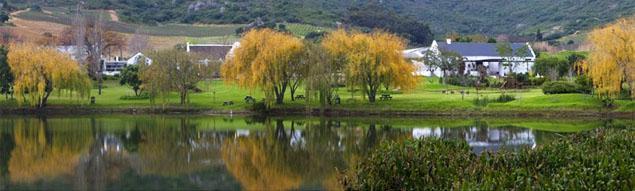 Rhebokskloof Wine Estate, Cape Winelands