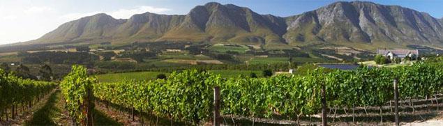 Sumaridge Wine Estate, Hermanus, Western Cape