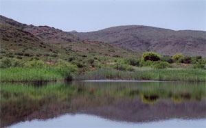 Vrolikheid Nature Reserve, Robertson