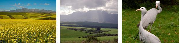 Calendon Cape Overberg
