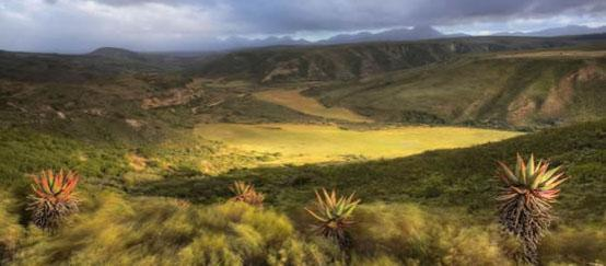 Gondwana Game Reserve, Mossel Bay, Garden Route