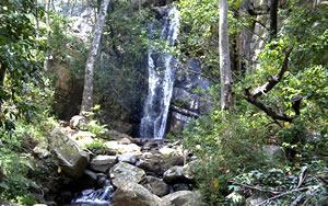 Lekgalameetse Nature Reserve, Limpopo