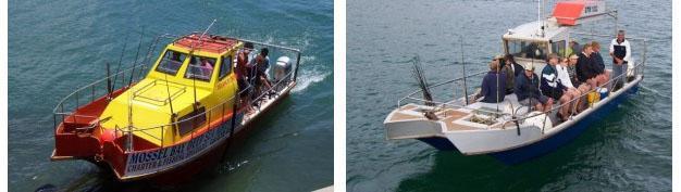 Mossel Bay Deep Sea Adventures
