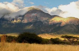 Moholoholo Game Farm, Hoedspruit, Limpopo