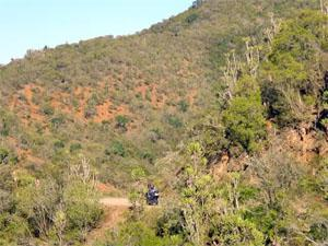 Zuurberg Mountains, Addo Region