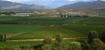 Bonnievale, Breede River Valley, Western Cape