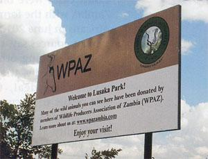 Incarcerated by Red Tape - Lusaka Park
