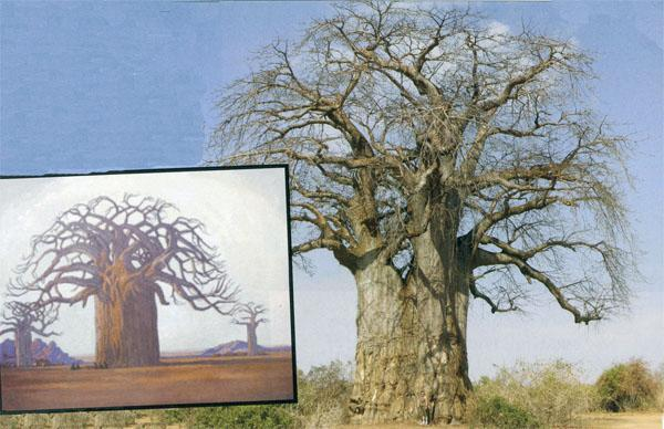 Pierneef's paintings often featured baobab trees