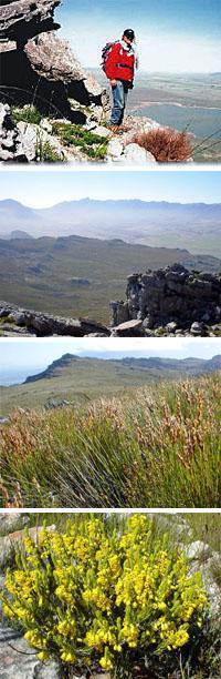 Silwerfontein Guest Farm & Hiking Trail, Tulbagh