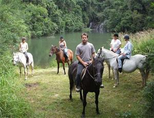 Stutterheim Horse Riding in Forests