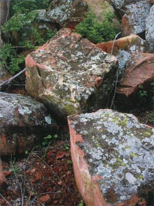 These sandstone blocks have been lying here form100 years