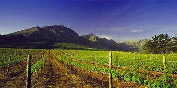 Theuniskraal Wine Estate, Tulbagh, Western Cape