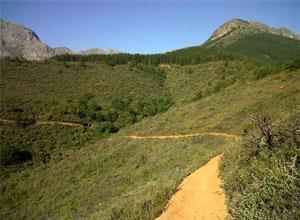 Welvanpas MTB Trail, Wellington
