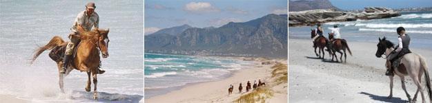 African Horse Company, Gansbaai Beach Horse Trails
