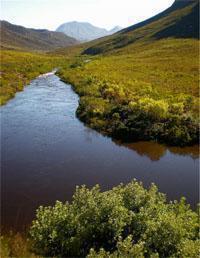 Kogelberg Nature Reserve Hiking Trails