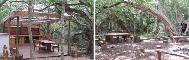 Platbos Forest Accommodation, Gansbaai