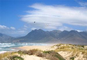 Pringle Bay Beaches