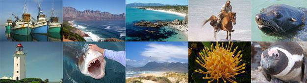 The Whale Coast Region of the Overberg
