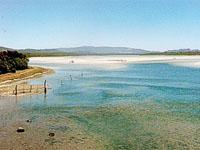 Uilkraals Estuary Gansbaai