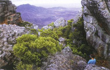 Apart from the 42km and 18km mountain runs that take place annually, there are numerous fantastic hiking trails to explore.