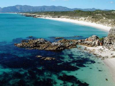 Walker Bay Nature Reserve, Cape Overberg