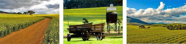 Wildekrans Wine Estate Botrivier