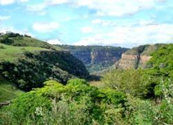 Krantzkloof Nature Reserve, Kloof, Durban