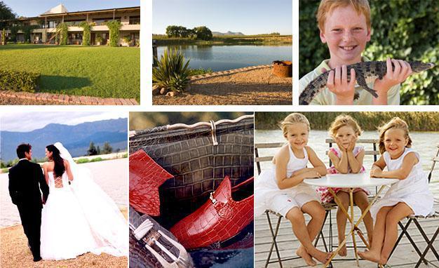 Le Bonheur Crocodile Farm, Simondium, Cape Winelands