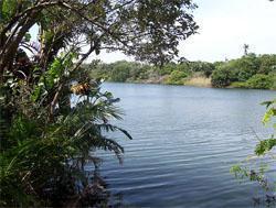 Mpenjati Nature reserve, Margate, KwaZulu-Natal