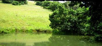 New Germany Nature Reserve, Pinetown, Durban