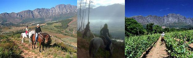 Paradise Horse Riding Trails, Franschhoek