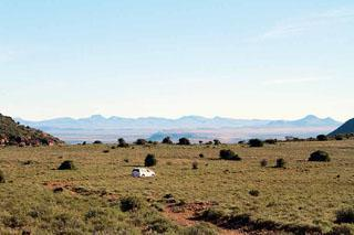 The park has ample game and the veld was in an excellent condition after nine consecutive days of rain, most unusual for the Karoo.