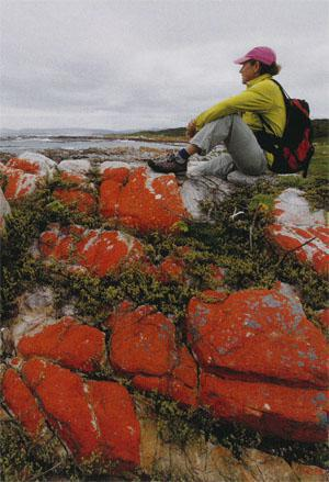Spectacular lichen-covered rocks add colour even when the skies are grey.