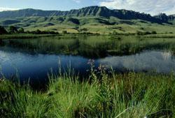 Kamberg Valley, Drakensberg, KwaZulu-Natal