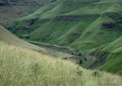 Monks Cowl, Drakensberg, KwaZulu-Natal