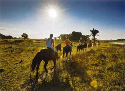 Horse riding alongside Lake St Lucia is a great way to see the reserve