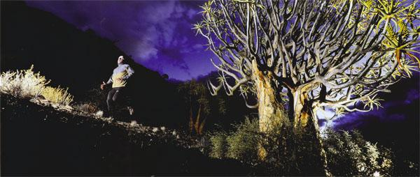 Running amongst ancient quiver trees on the Gannabos Road is as close to an out-of-body experience you will get on any given starlit night.