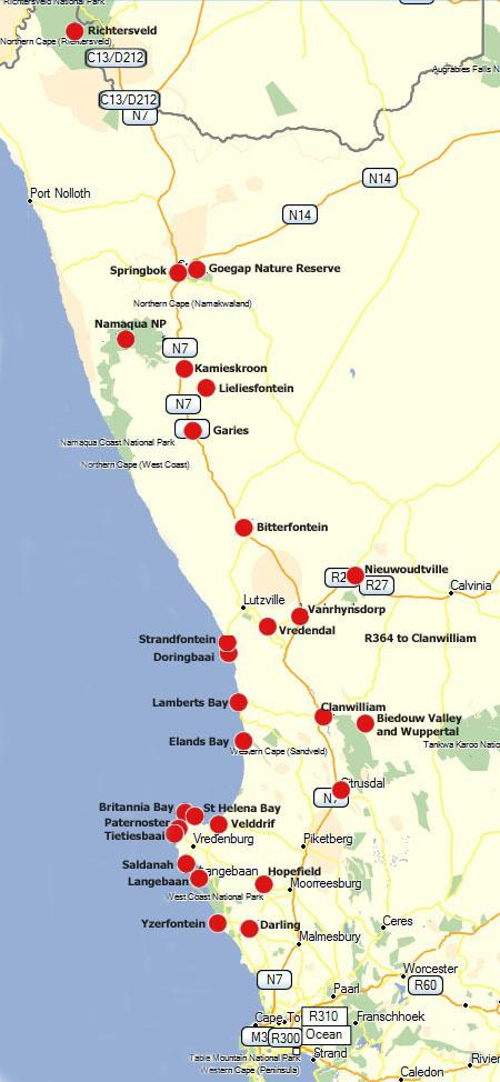 Self Drive the Cape Flower Route, West Coast and Namaqualand