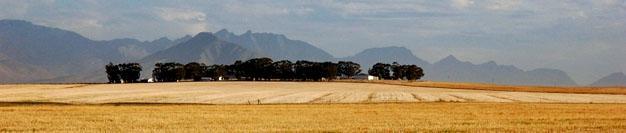 Riebeek West, Swartland, Western Cape