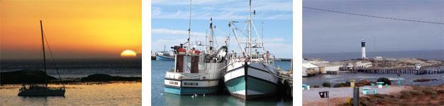 St Helena Bay Fishing