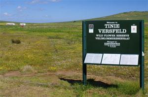 Tienie Versveld Wildflower Reserve, Darling