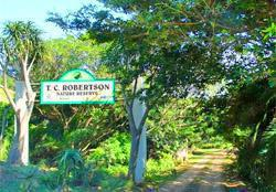 TC Robertson Nature Reserve, Scottburgh, Umdoni Coast, KwaZulu-Natal