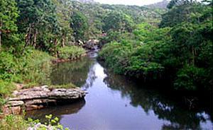 Uvongo River Nature Reserve, Hibiscus Coast, KwaZulu-Natal