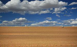 Verneukpan, Kenhardt, Green Kalahari, Northern Cape