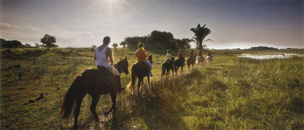 Horse riding is one of the several activities offered near the town of St Lucia.