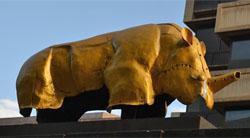 Mapungubwe rhino, Main Street Mall, Jhb CBD