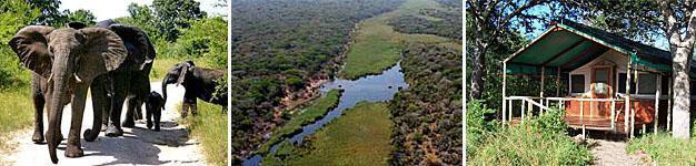 Tembe Elephant Park, Elephant Coast, KwaZulu-Natal